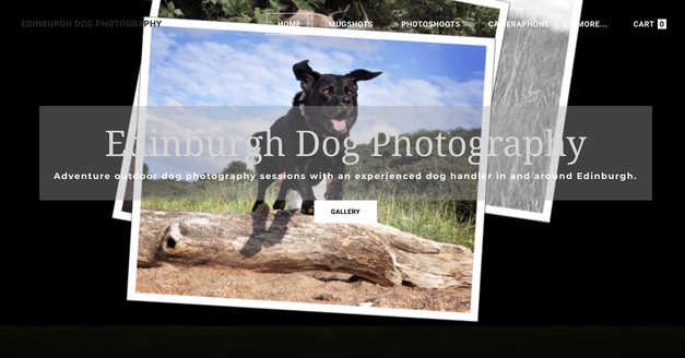 The Edinburgh Dog Photography website designed by Blank Jotter